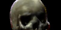 Bone (Oblivion)