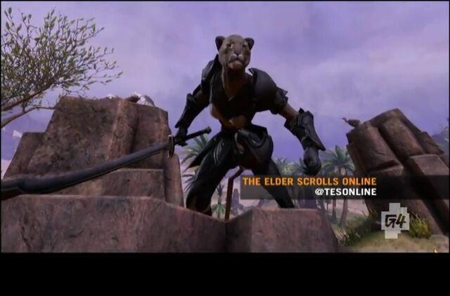 File:Elder Scrolls MMO Khajiit.jpg