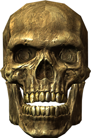 File:Ancient traveler's skull.png