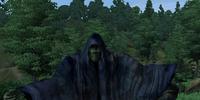TestWraith02