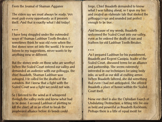 File:Agganor's Journal.png