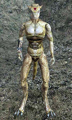 File:Neesha Morrowind.png