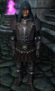 TESIV Guard Battlemage