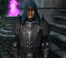 Imperial Legion Battlemage (Oblivion)