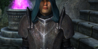 Imperial Legion Battlemage (Oblivion)