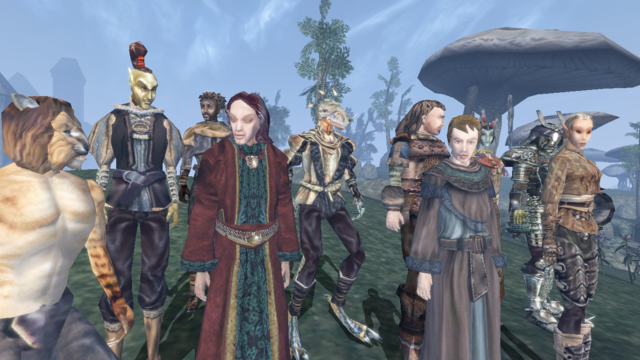 File:Races (1) - Morrowind.png