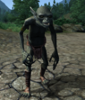 Goblin (hand to hand)