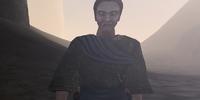Sauleius Cullian