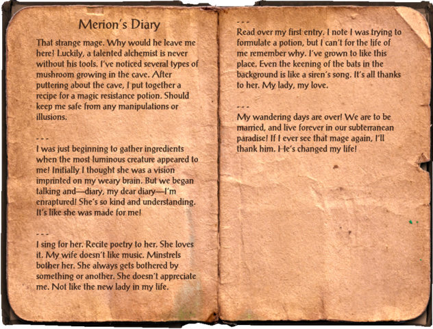 File:Merion's Diary.png
