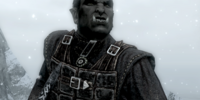 Dawnguard Scout