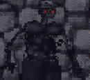 Wraith (Arena)
