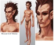 Wood Elf Male