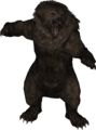 LS-model-bear.png