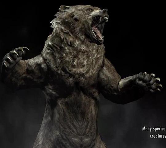 Fichier:Bear.png