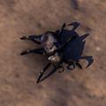 ESO Beetle.png