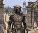 Rawhide Armor