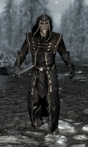 File:Thalmor Wizard.png