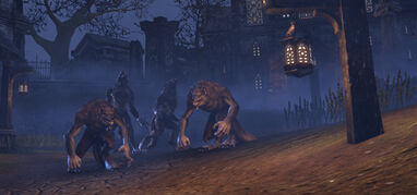 ESO Werewolf