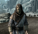 Wizard (Dragonborn)