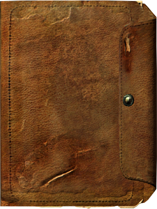 File:Journal cover meeko.png