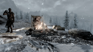 Hunters Camp Watching Dawnstar
