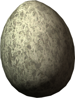 File:Chicken egg.png