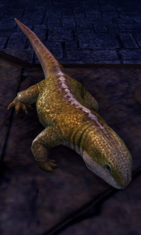 File:ESO Lizard.png