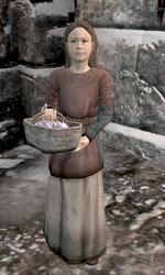Windhelm Skyrim Elder Scrolls Fandom Powered By Wikia