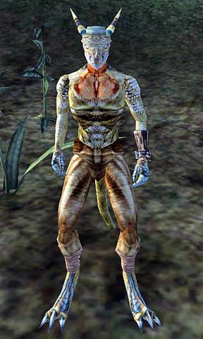 File:Grey-Throat Morrowind.png