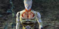 Grey-Throat (Morrowind)