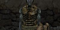 Nordic Trollbone Armor