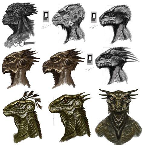 File:Argonian Faces.jpg