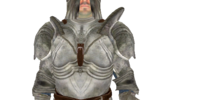 Steel Armor (Oblivion)