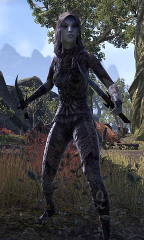 File:Vereansu Slayer.png
