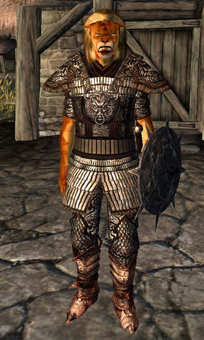 File:Blackwood Company Guard WatersEdge3.png