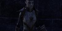 Defender Maera