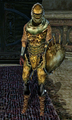 Thumbnail for version as of 22:10, February 2, 2014