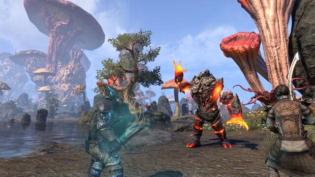 File:Morrowind combat.jpg
