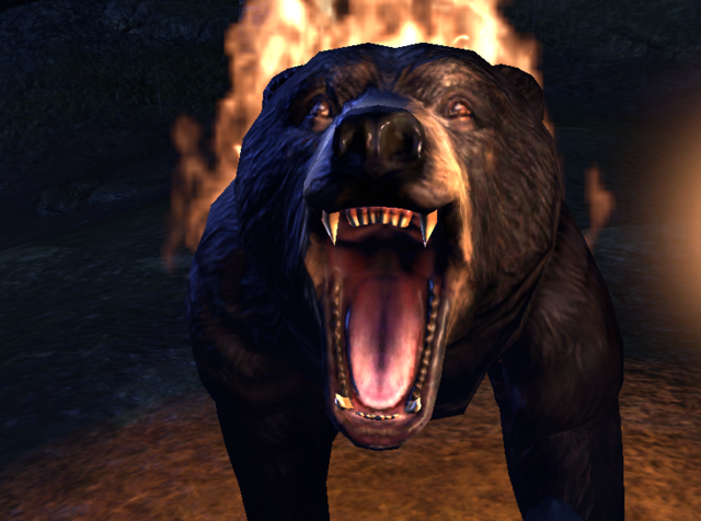 File:Bear essentials1.png