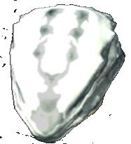 File:Albino Spider Pod.png