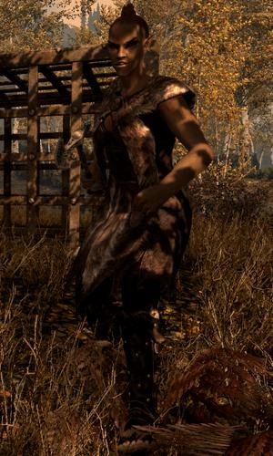 Trapper 1