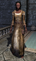 Belted Tunic 0001BE1A.png