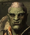 Orc2.png