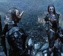 Aela the Huntress (Skyrim)