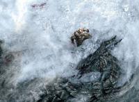 Slain Dragon Concept.png