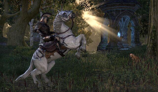File:White Imperial Horse.jpg