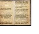 Crafting Motif 9: Argonian