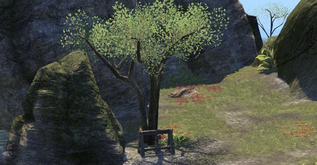 File:Greenshade Treasure Map V View.png