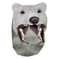 Snow Bear Helmet.png
