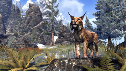File:Northern Lynx.png